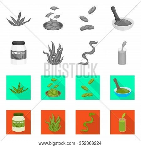 Vector Illustration Of Protein And Sea Sign. Collection Of Protein And Natural Vector Icon For Stock
