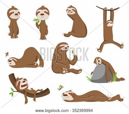 Set Of Cute Baby Sloth. Adorable Cartoon Animals. Funny Cartoon Sloths In Different Poses. Cute Lazy