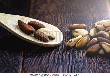 Brazilian Chestnut, Grown In The Amazon And Acre, Known In Brazil As