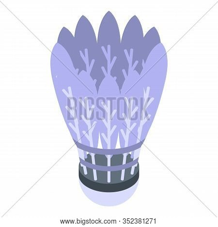 Shuttlecock Icon. Isometric Of Shuttlecock Vector Icon For Web Design Isolated On White Background