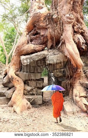 Buddhist monk with rainbow umbrella go to roots of giant tree on ruins of Khmer ancient temple Angkor Wat (Angkor Thom), Siem reap, Cambodia, Indochina. UNESCO world heritage Site