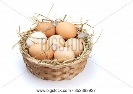 Chicken Eggs In A Basket With Hay. Organic Eggs On A White Background.