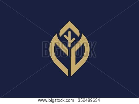 Initial Letter C And O With Abstract Leaf Logo Sign Symbol