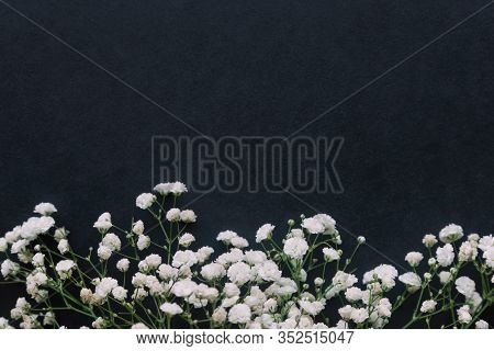 Gypsophila White Baby's Breath Flower On Black Granite Table Background With Copy Space. Isolated Be