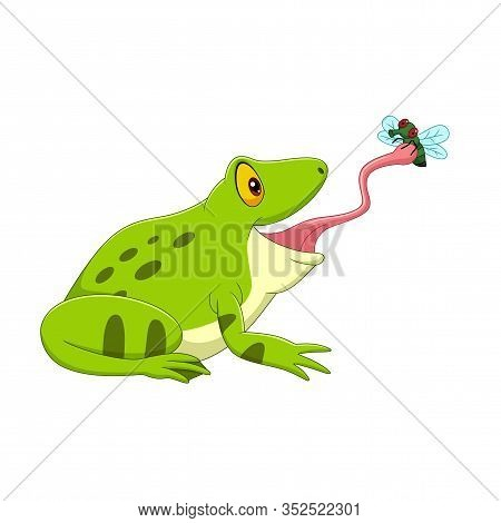 Vector Illustration Of Cartoon Frog Catching A Fly