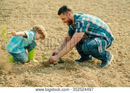 Father And Son Work On Earth Ground. Family Planting. Daddy Teaching Little Boy To Do Gardening