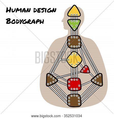 Human Design Bodygraph. Nine Colored Energy Centers