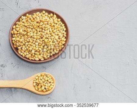 Spice Coriander (coriandrum Sativum) Seeds In Clay Plate And Wooden Spoon On Gray Concrete Backgroun