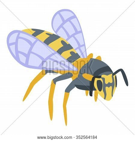 Wild Wasp Icon. Isometric Of Wild Wasp Vector Icon For Web Design Isolated On White Background
