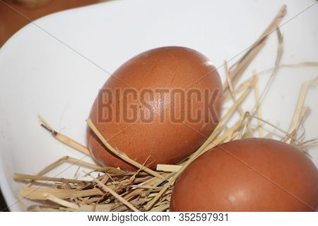 Two Natural Chicken Hen Brown Eggs In A Hay, Nautral Healthy Food Concept