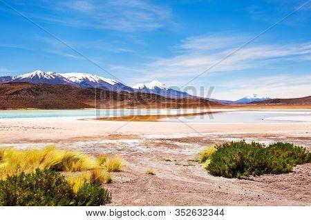 High-altitude Lagoon In Altiplano Plateau, Bolivia. South America Landscapes