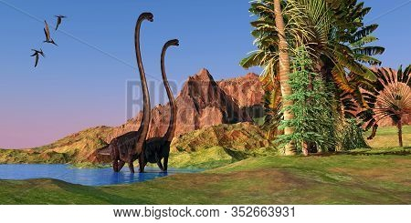 Jurassic Omeisaurus Dinosaurs 3d Illustration - Two Omeisaurus Dinosaurs Wade Through Shallow Water