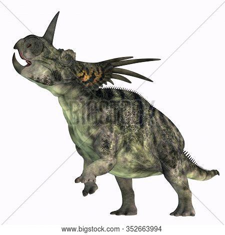 Styracosaurus Dinosaur Over White 3d Illustration - Styracosaurus Was A Herbivorous Ceratopsian Dino