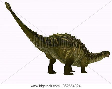 Talarurus Dinosaur Tail 3d Illustration - Talarurus Was A Herbivorous Armored Dinosaur That Lived In