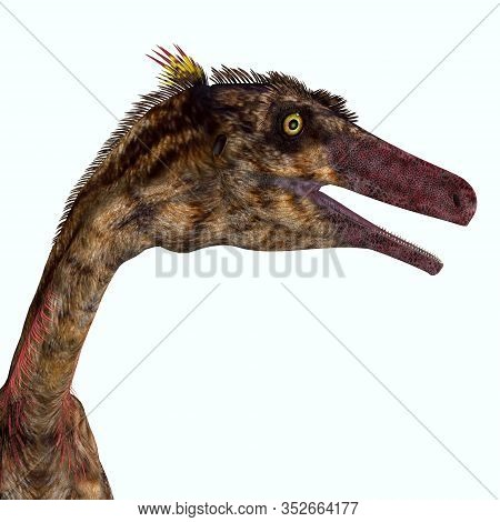 Troodon Dinosaur Head 3d Illustration - Troodon Was A Carnivorous Theropod Dinosaur That Lived In No