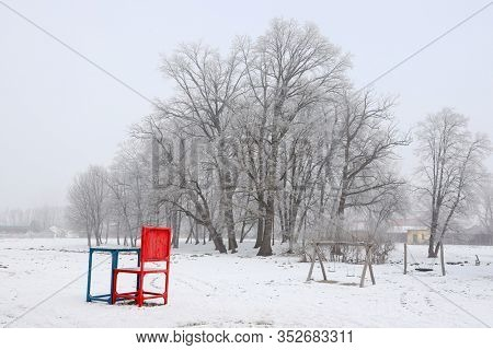 Winter landscape, snowy winter trees along the winter park alley