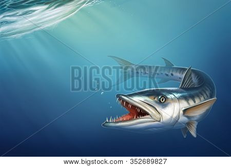 Great Barracuda On Ocean Under Water Realistic Illustration Place For Text. Great-seater Atlantic Pr