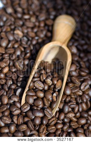 Coffee Beans Scoop Close Up
