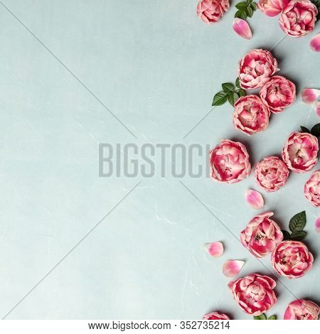 Flat lay decorative border of pink tulips and green leaves on blue background