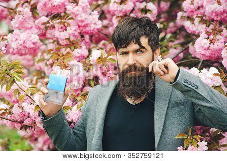 Masculine Perfume. Spring Flowers. Man Perfume, Fragrance. Male Fragrance And Perfumery, Cosmetics.