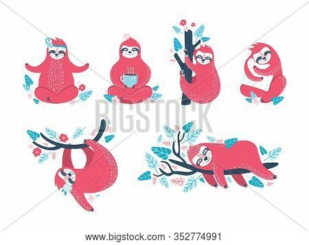 Funny Sloths In Different Poses. Set Of Lazy Exotic Animals That Sleep, Doze, Rest On A Branch Of A