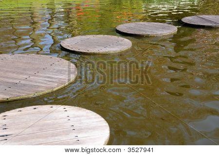 Path Thru A Pond
