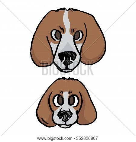 Cute Cartoon Foxhound Puppy And Adult Hunting Dog Face Vector Clipart. Pedigree Kennel Baby Doggie B