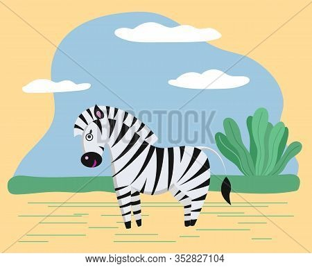 Zebra Stand In Safari Or Savanna. Wild Character In Wilderness Or Zoo. Animal Use Black And White St