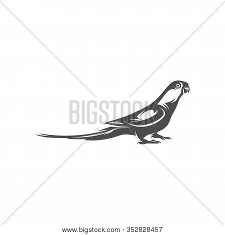 Parrot Logo Icon Design Vector Illustration, Parrot Logo Template