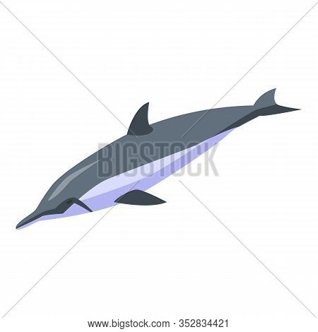Aquatic Dolphin Icon. Isometric Of Aquatic Dolphin Vector Icon For Web Design Isolated On White Back