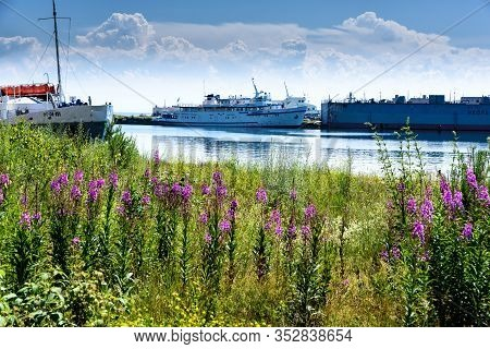 Port Baikal, Russia - July 17, 2019: Summer Landscape With Mountains, Purple Flowers Ivan Chai And S