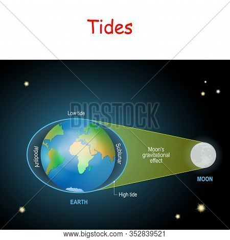 Tides Diagram. Low And High Lunar Tides. Effect Of Moon Gravitational Force On Seacoast Water Level.