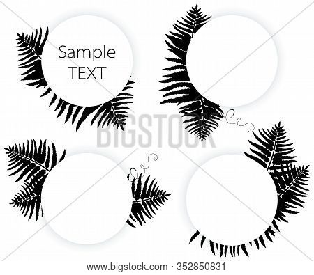 Vector Set Of Round Frame With Silhouettes Fossil Forest Fern Leaves In Black Isolated On White Back