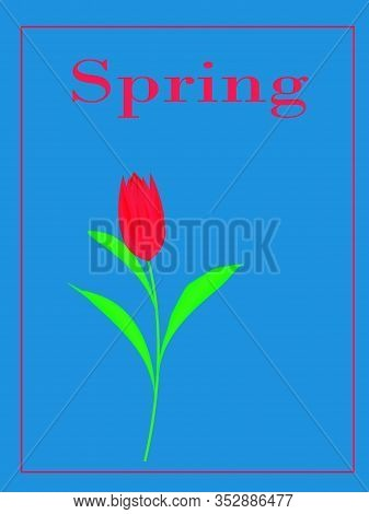 Spring Flower Landscape. Spring Blooming Spring Flowers Against Blue Background. Multi-colored Flowe