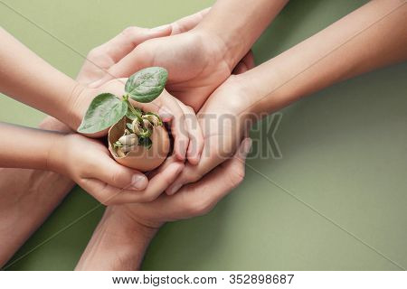 Hands Holding Seedling In Eggshells, Montessori Education , Csr Corporate Social Responsibility, Eco