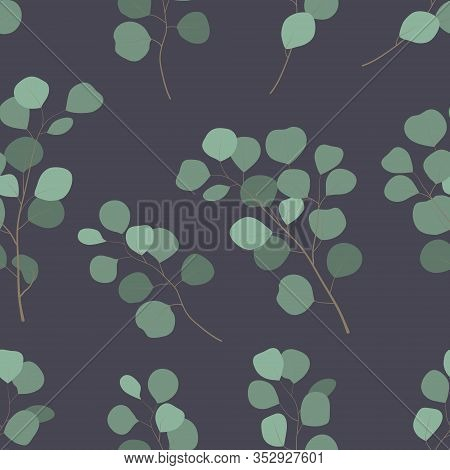 Floral Decorative Seamless Pattern Of Eucalyptus Silver Dollar Tree Twig On Dak Grey Background. Gre