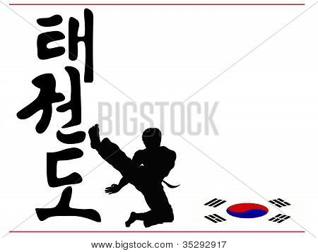 Taekwondo white card