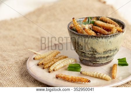 Food Insects: Bamboo Worm Or Bamboo Caterpillar Insect Fried Crispy For Eating As Food Items In Bowl