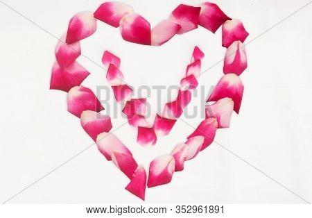 Love Shape Rose Petal Letter V Background Image On White Background. Letter V Into Love Shape