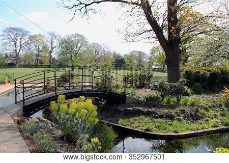 Bridge In The Park. Beautiful Lake In The Park With Green Trees. River In A Park With Green Banks. A