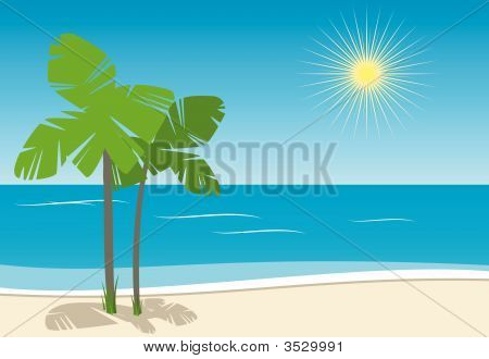 Sandy Beach With Palms