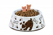 dish of dog food with two dog treats sticking out poster