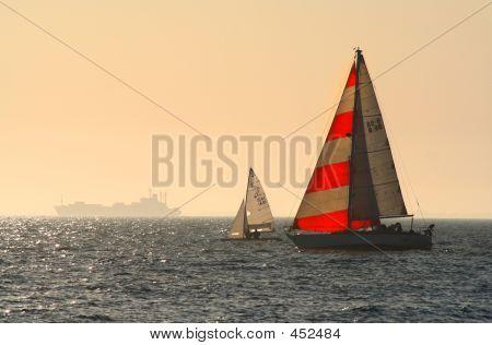 Yachts At Brighton
