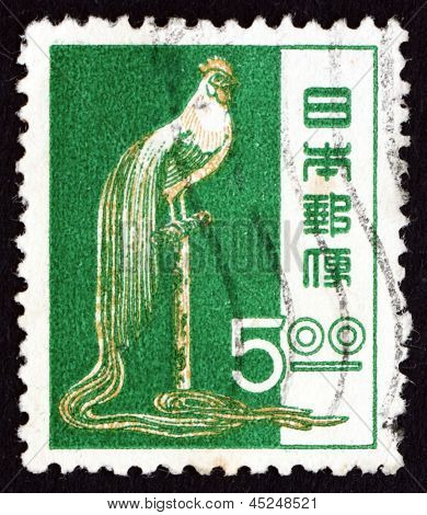 Postage Stamp Japan 1951 Long-tailed Cock Of Tosa