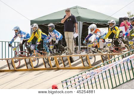 Juveniles At The Starting Gate