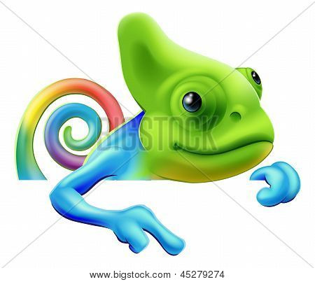 Rainbow Chameleon Pointing Down
