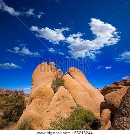 Skull rock in Joshua tree National Park Mohave desert Yucca Valley California USA