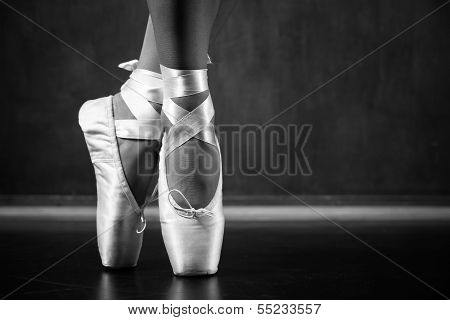 Young Ballerina Dancing