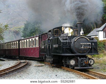 Steam narrow gauge train.