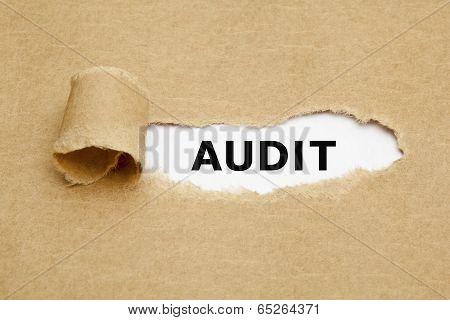 Audit Torn Paper Concept